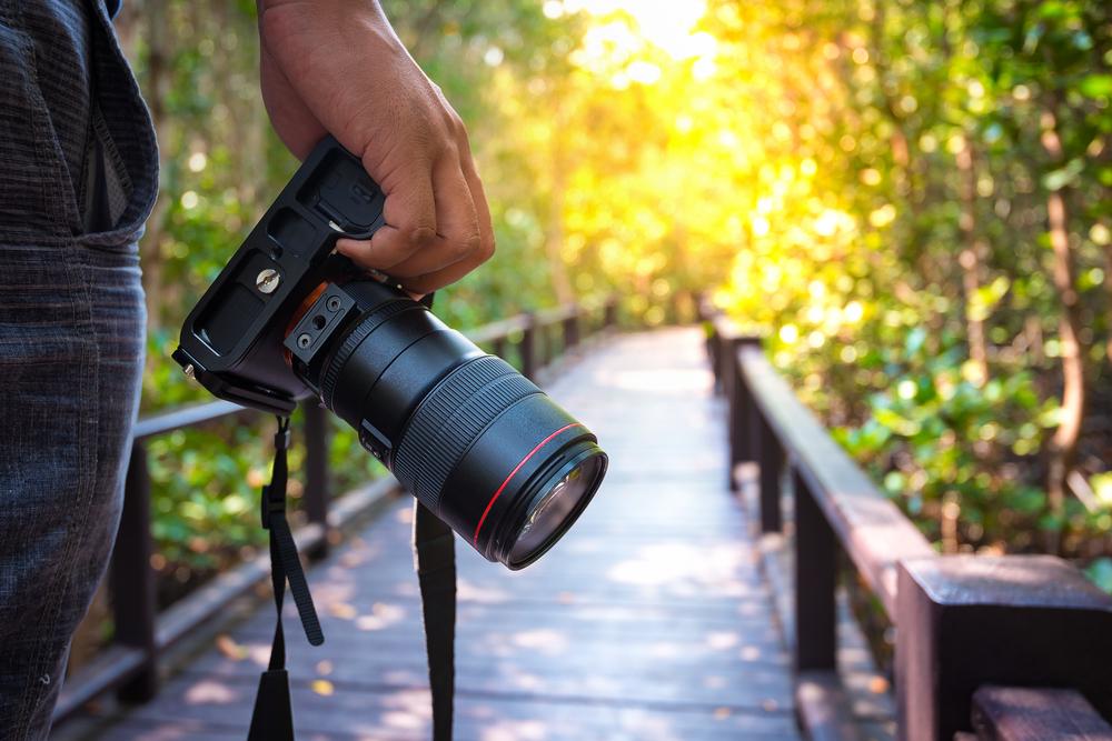 Les meilleurs appareils photo pour les débutants en 2020